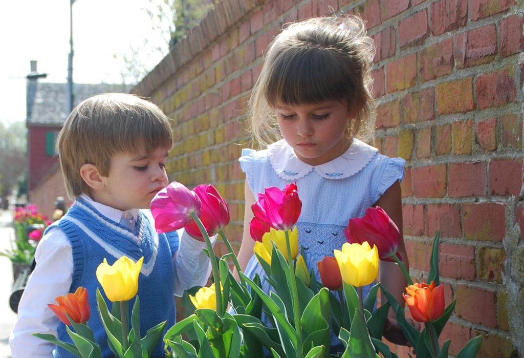 Children enjoying the Lewes Tulips