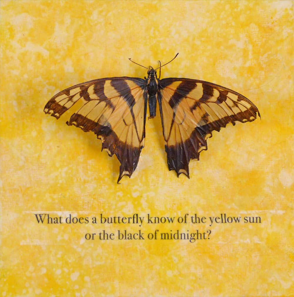 "Mary McCoy, ""What Does a Butterfly Know?"", butterfly, iron-on transfer and acrylic on panel, 6"" x 6"" x ½"""