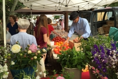 Farmers Market in Chestertown, MD